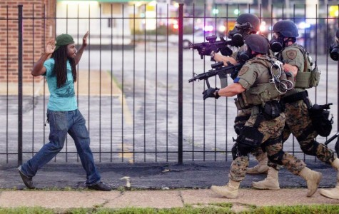 Opinions on Ferguson shooting