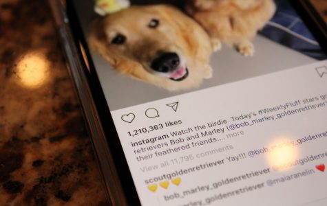 Likes over content? A new addition coming to Instagram